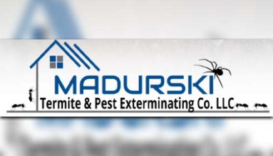 Madurski Termite