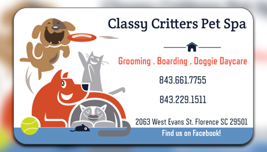 Classy Critters Pet Spa