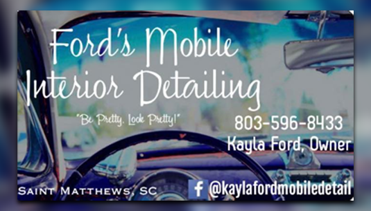 Ford's Mobile Detailing